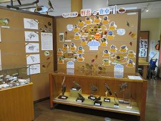 季節展示「ちょー(鳥)!グルメ 野鳥の食卓」
