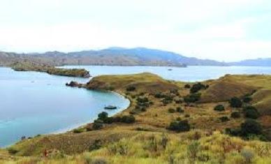 pantai taman nasional komodo