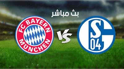 مشاهدة مباراة شالكه وبايرن ميونخ بث مباشر اليوم 24-1-2021  في الدوري الألماني.