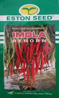 benih cabai besar, musim hujan, cara menanam cabe, cabe merah,imola reborn f1, eston seed, jual benih cabe besar, toko pertanian, toko online, lmga agro