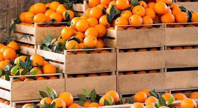 7 Manfaat Jeruk Ponkam yang Jarang Diketahui