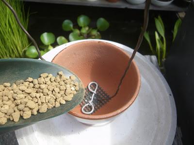 小粒 鉢底石