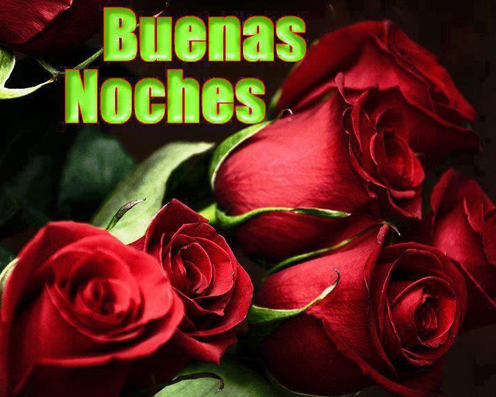 Buenas Noches rosas rojas