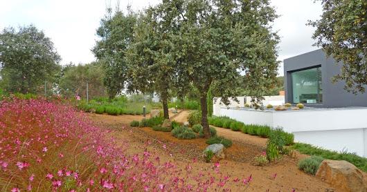 Jardiner a y paisajismo google for Pdf jardineria y paisajismo