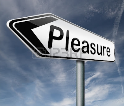 Happiness Versus Pleasure