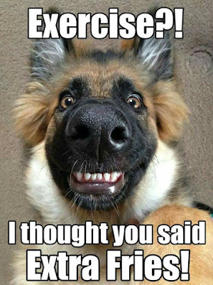 Funny Dog Humor : Sorry i thought you said?