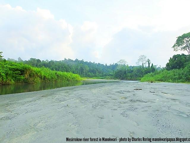 Riverwalk tour in Manokwari
