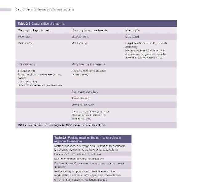 Classification of anaemia.