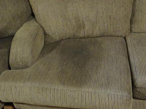 ¿Cómo limpiar la orina de perro y eliminar el olor