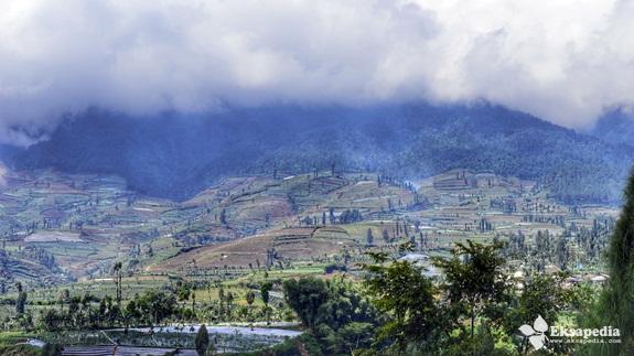 Pemandangan Lereng Gunung Sumbing