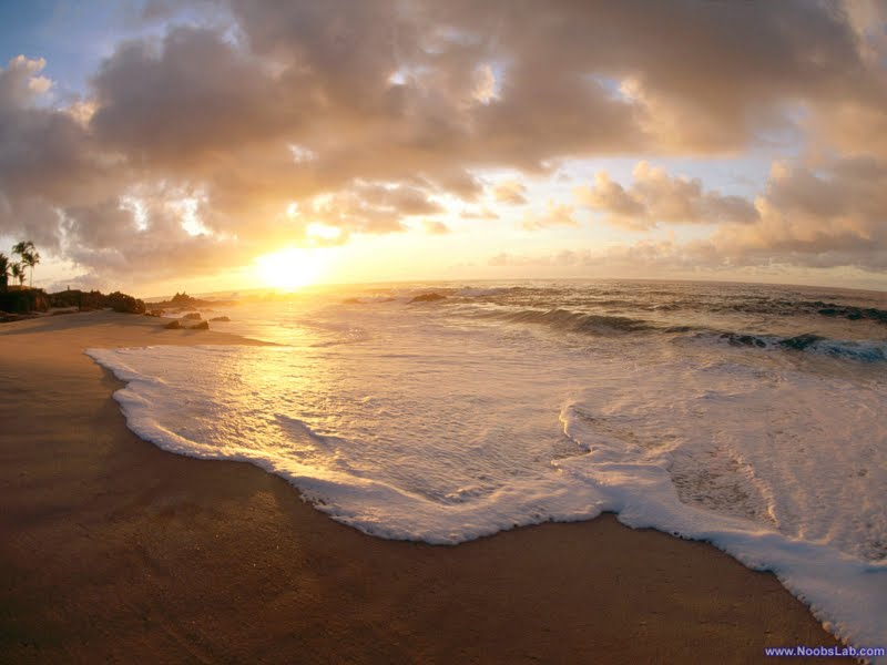 Amazing Beaches Wallpapers 1600 X 1200 - NoobsLab | Tips ...