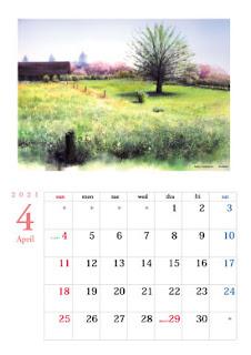 4月 草はらの向こうに八重桜 秋元牧場で