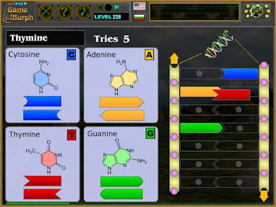 DNA Puzzle