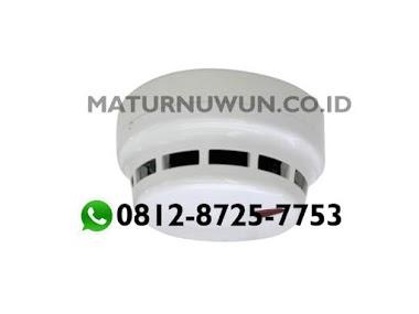 Smoke Detector Telefire TFO-480