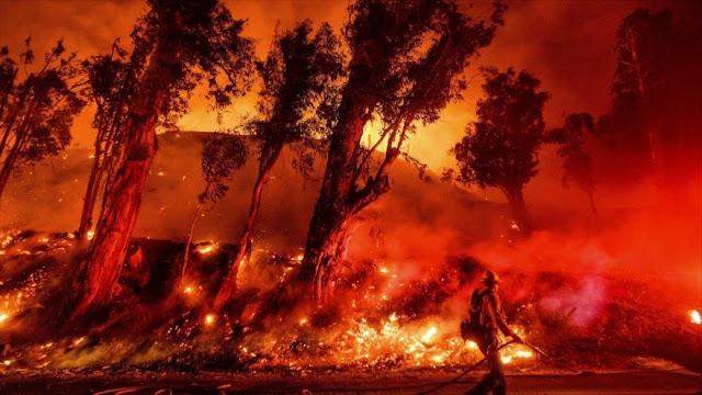 11 000 científicos alertan de efectos 'graves' de cambio climático