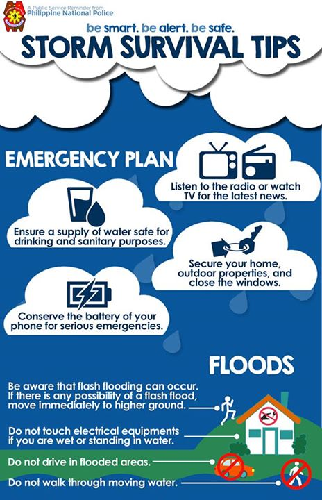 Infographic on Surviving a Storm