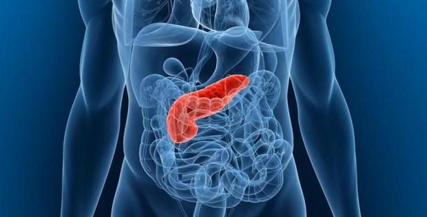 Cara Menjaga Kesehatan Pankreas