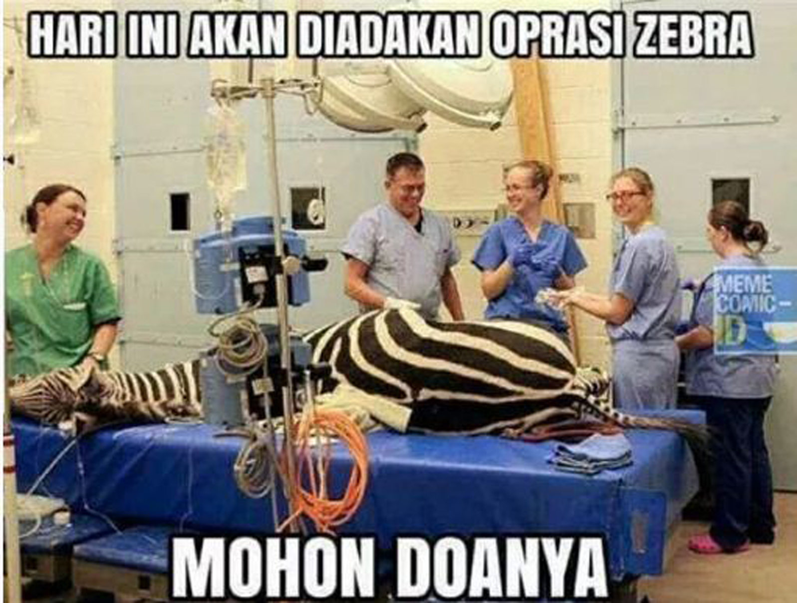 47 Meme Lucu Operasi Zebra Keren Dan Terbaru Puzzle