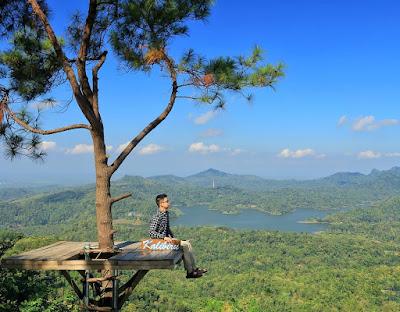 Wisata Alam Kalibiru, Puncak terindah untuk Menikmati Kota Jogja