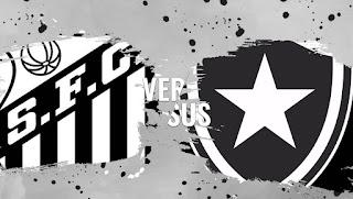 Santos x Botafogo ao vivo : saiba onde assistir à partida do Brasileiro Série A