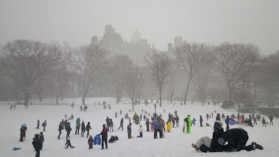 Winter Activities in Central Park New York City
