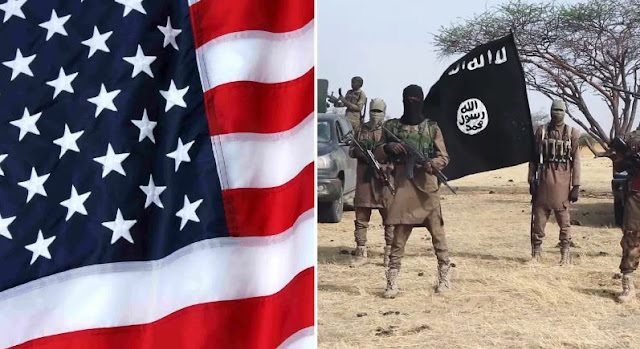 ISWAP: US reacts as UN labels Boko Haram faction terrorist organisation
