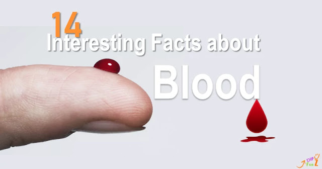Facts about Blood