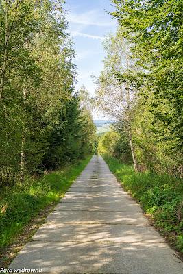 Leśna droga między Mochnaczką a Izbami, widok w kierunku Mochnaczki