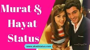 Top 20+ Best Hayat and murat status | Hayat and murat love images
