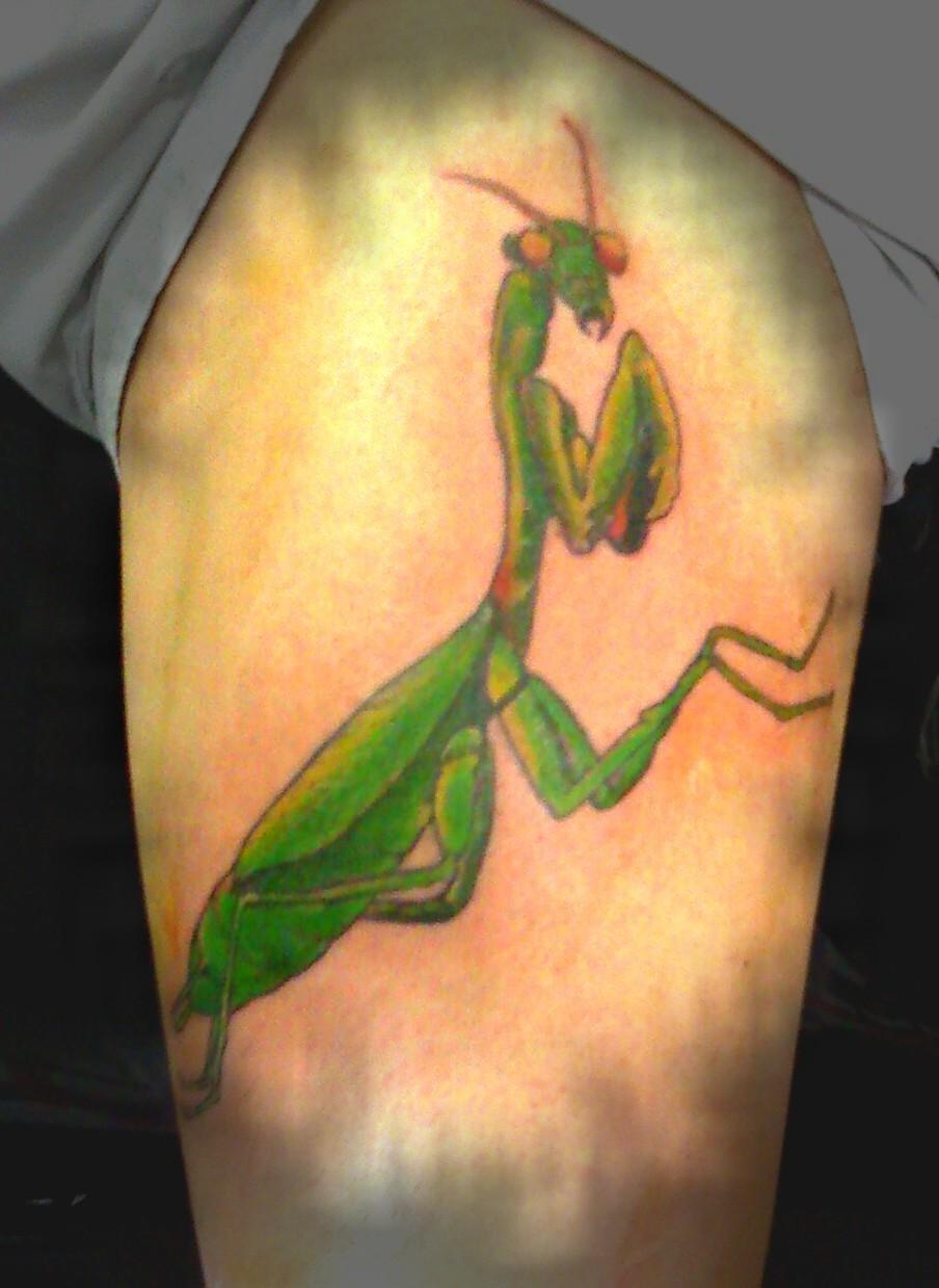 Ick Tattoo Ilhabela Louva Deus By Ick Tattoo