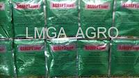 melon elegan, budidaya melon, jual benih hibrida, jual benih tunas agro, toko pertanian, toko online, lmga agro