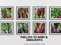 4 Cara Lengkap Merubah Gambar JPG PNG ke WEBP dan Sebaliknya