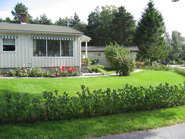 Tips til hagedesign. Hvordan hagen så ut i 2012 da vi overtok eiendommen. Furulunden.
