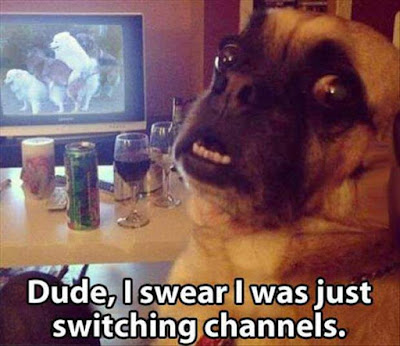 Dude, I swear I was just switching channels