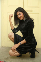 Mounika in a velvet short black dress for Tick Tack Movie Press Meet March 2017 058.JPG
