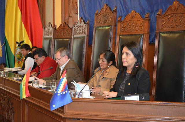 López durante la interpelación en el Senado respondió al caso Prontis / MIN. COMUNICACIÓN
