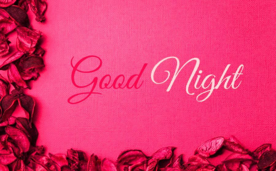 Good Night Pink Flower