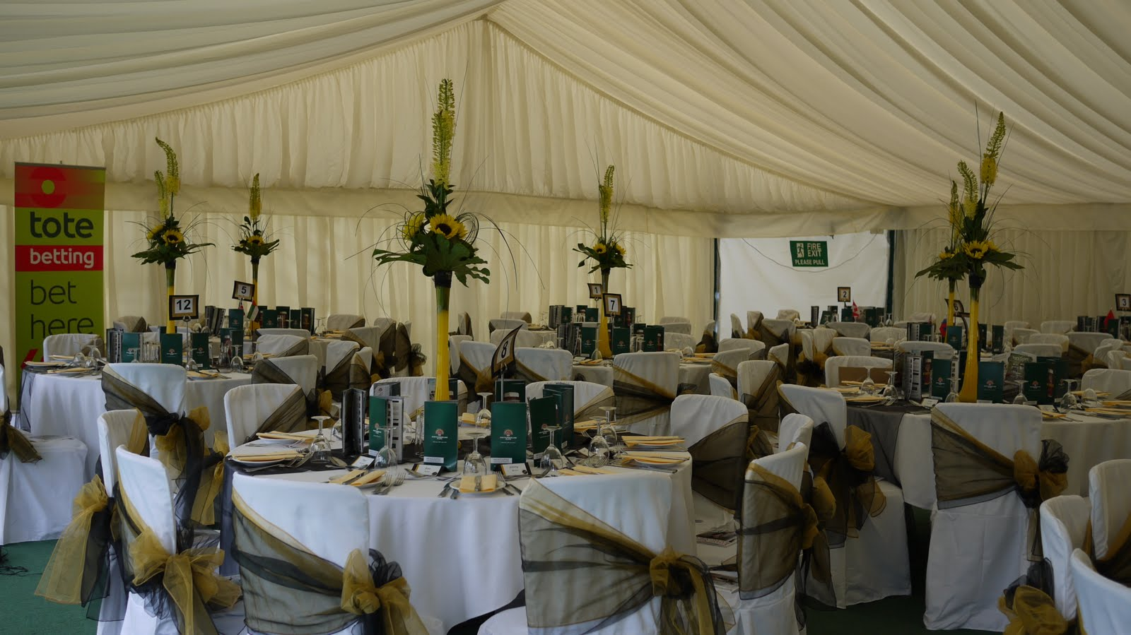 Wedding Chair Covers Newcastle Upon Tyne Miami Dolphins Simply Bows And Racing Splendour