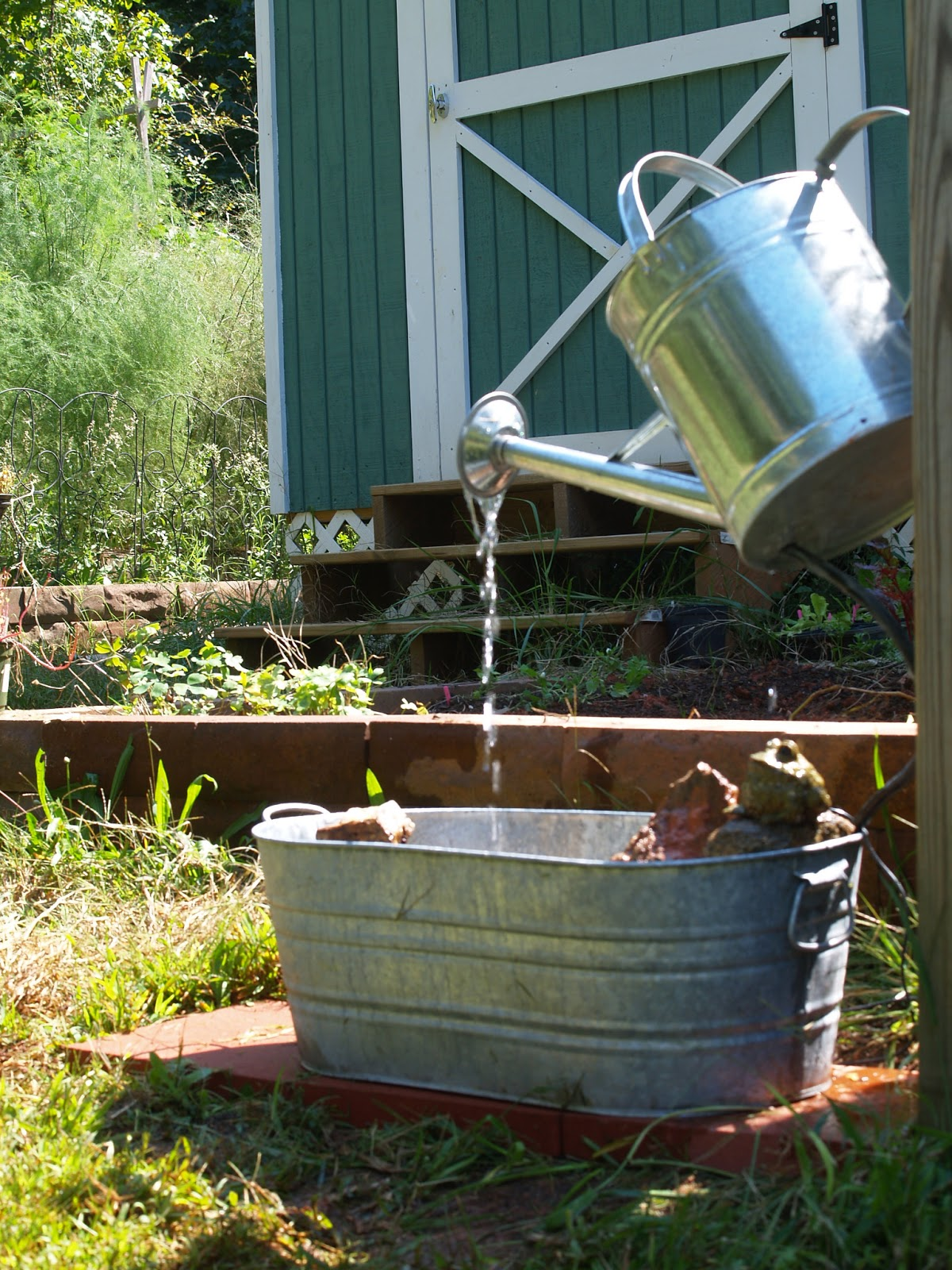 Budding And Blooming Project Watering Can Fountain