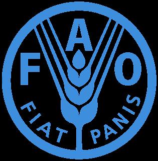 FAO: Appel à candidatures cours en ligne sur la restauration des forêts et des paysages