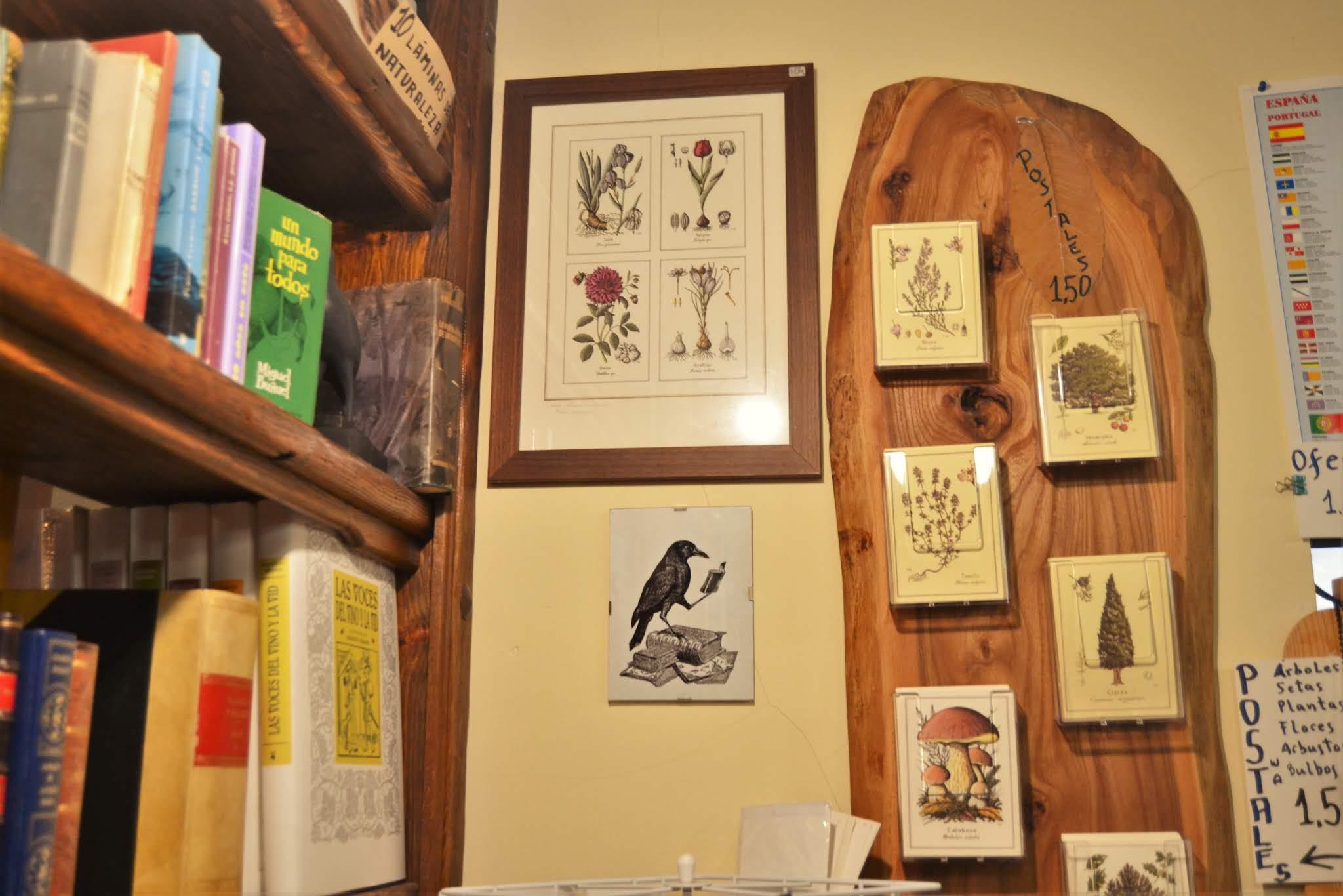 URUEÑA_VILLA_LIBRO_16_libreria-alcaravan