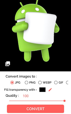 Convert PNG to JPG using app