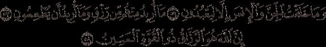 وما خلقت الجن والإنس إلا ليعبدون (56) ما أريد منهم من رزق وما أريد أن يطعمون (57) إن الله هو الرزاق ذو القوة المتين (58)