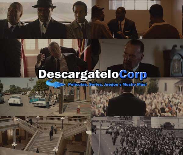 Descargar Selma El Poder de un Sueño DVDRip Latino