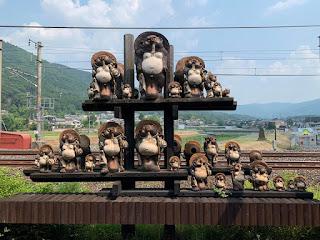 raccoon dog in Kyoto Japan