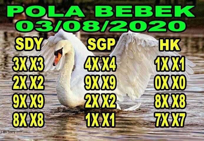 syair sydney pola bebek 3 agustus 2020