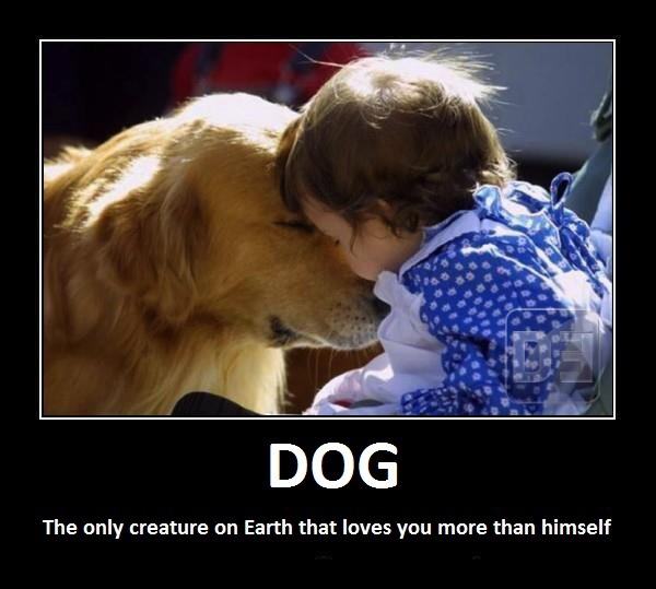 Dog - The Only Creature On Earth That Loves You More Than Himself