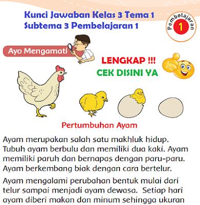 Kunci Jawaban Kelas 3 Tema 1 Subtema 3 Pembelajaran 1 www.simplenews.me