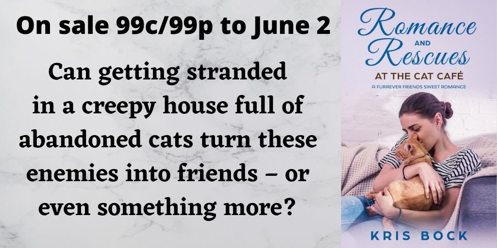 Get a sweet enemies to lovers romance with cat rescue for only 99 cents! #romance #SweetRomance #ContemporaryRomance