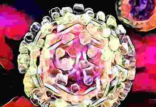 Virus Hepatitis lebih Bahaya dari HIV AIDS